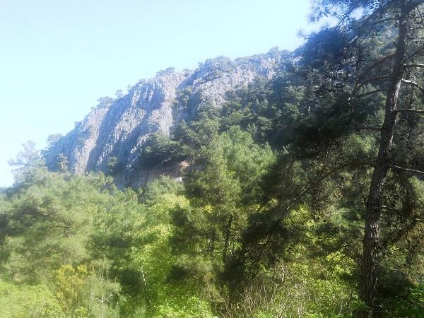 Ο ψηλός βραχώδης γκρεμός που οριοθετεί τη μια πλευρά του ρέματος της Καρκαβούρας.