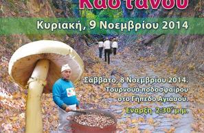 Αφίσα της 11ης Γιορτής Κάστανου.