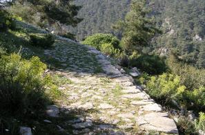 Ένα καλοδιατηρημένο λιθόστρωτο μονοπάτι οδηγεί στην κορυφή του Καστελιού. Στο βάθος ο πευκόφυτος Ροδίτης και η βραχώδης κορφή του Ολύμπου.